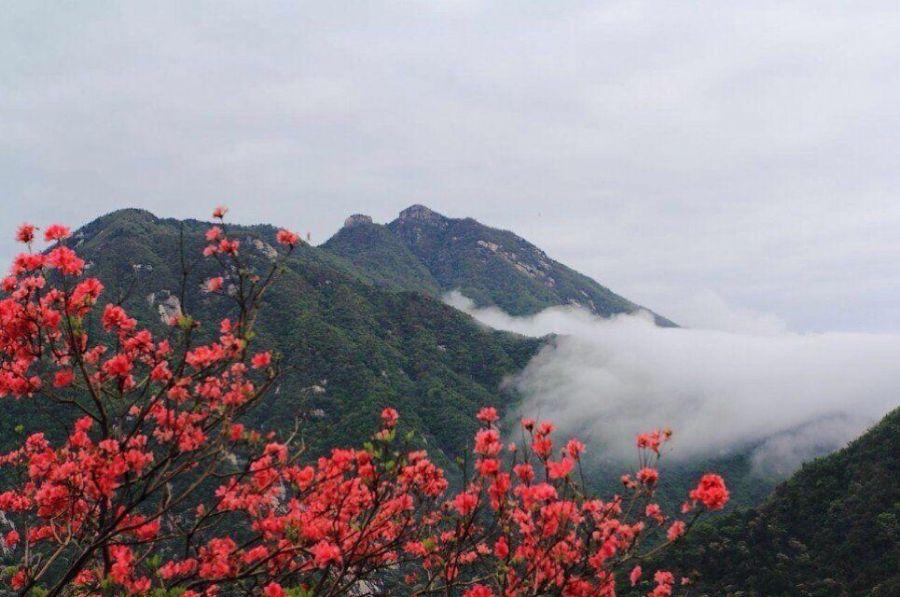 相见天马寨 英山县天马寨风景区|英山县篓子石旅游|县