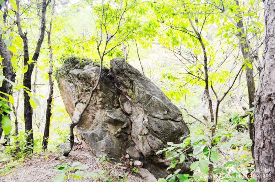 万年龟科技有限公�_英山天马寨不只是有花海英山县天马寨风景区 英山县篓子石
